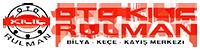 Otomotiv Sanayi ve Endüstri Rulman | Keçe | KAyış | Zincir | Dişli
